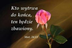 All Souls Day, Christianity, Faith, God, Quotes, Bible, Polish Sayings, Dios, Quotations