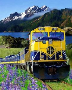 Alaska Railroad, this is how we traveled to aunts cabin in Wasilla, Alaska as a child.
