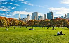25 Best Things to Do in New York - Condé Nast Traveler Best Places To Retire, Cool Places To Visit, Places To Go, Zermatt, Dublin, Stockholm, Astoria New York, Amsterdam, Mega Sena
