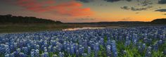 American Landscape Images by Mike Brymer – Austin Texas Landscape ...