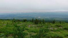 where the Arctic circle start. Arctic Circle, Mountains, Nature, Travel, Naturaleza, Viajes, Trips, Nature Illustration, Outdoors
