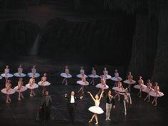 Swan Lake - Teatro Alla Scala – 14 dicembre 2007   Il padiglione d'oro