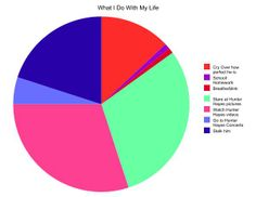 Hunter Hayes pie chart. Pretty accurate...except the 6th one....I wish it was true for me. ='(