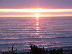 lavender sunsets~