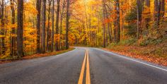 Fall drive in the Smoky Mountains