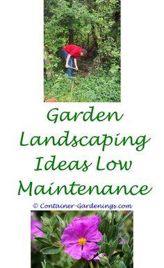 sm garden ideas in mi - garden show display ideas.shade flower garden ideas community garden ideas gardening tips dividing dahlia tubers 6130126954