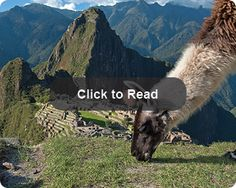Educational Student Travel Tours to Latin America