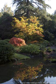 Kubota Garden, Seattle. #TMOM