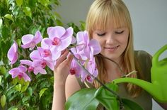 Orchids, Natural Beauty, Nature, Flowers, Plants, Gardening, Recipes, Orchids In Water, Exotic Beauties