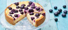 Heerlijk recept voor taart met krokante bodem gevuld met cheesecake en blauwe bessen