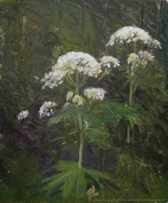 Giant Hogweed King of the Flowers Doetinchem The Netherlands, painting by artist Rene PleinAir