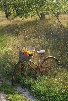 Love this old Bike with basket full of flowers