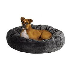 Found it at Wayfair - Quiet Time Deluxe Bagel Dog Bed in Gray