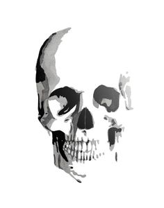 Skull Canvas Print by THE AESTATE