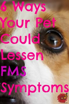 My dog helps me each and every day to cope with the symptoms of Fibromyalgia & Chronic Fatigue/ME flares. This article also contained a Fantastic video from a study done at Harvard on the scientifically proven ways that pets provide benefit to the physical & emotional well-being of their owners! I always knew this, my dogs have been an invaluable source of comfort & joy over the years which is expecially important to those of us who are chronically ill. LOVED THIS! ♥♥♥ *Pin Now Read Later!