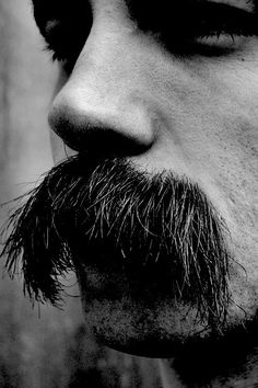 All men should have bushy mustaches. Beards And Mustaches, Moustaches, Cool Mustaches, Mens Hairstyles With Beard, Cool Hairstyles For Men, Hair And Beard Styles, Hair Styles, Beard No Mustache, Man Fashion