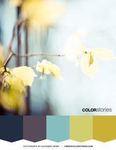 Sprout | Color Stories™  #colorstoriesblog #spring #colorpalette #colour #designinspiration #colortheme #botanical