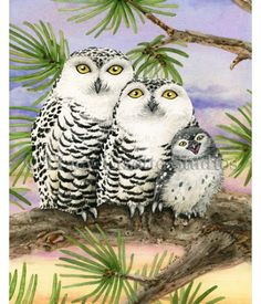 This fun watercolor painting shows a Snow Owl family settling in for the night. Prints available at TracyLizotteStudios.com.