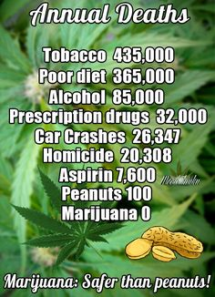 I would love to see marijuana legalized BECAUSE I believe the Bible. God created the earth and everything in it and HE said it was GOOD!!