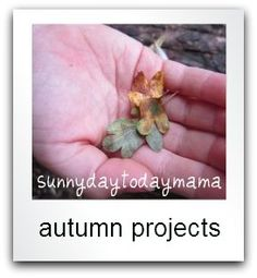 Autumn Projects: autumn crafts, homemade pumpkins, nature walks, autumn leaves, picture books http://sunnydaytodaymama.blogspot.co.uk/p/autumn-projects.html