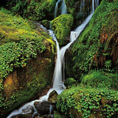 Small Waterfall in Oregon, by landscape photographer Christopher Burkett