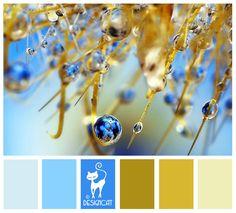 Dew Drop - Toffee, coffee, beige, cream, pastel, blue, turquoise,  Designcat… Paint Color Combos, Colour Pallette, Colour Schemes, Color Patterns, Color Combinations, Color Harmony, Color Balance, World Of Color, Color Of Life