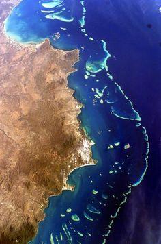 Bucket list: dive the Great Barrier Reef