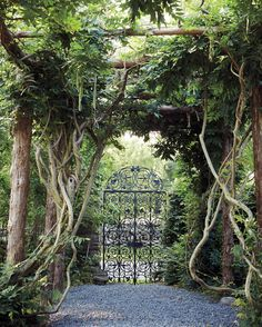 """In the formal garden, Ely planted wisteria along the rustic pergola, which was constructed from cedar wood found on the working farm at the end of the path. """"Ely was a real 'dirt gardener,'"""" says Teal-Sullivan. Through her books, Ely encouraged women to take an active role in the garden. """"Patience and perseverance are traits necessary to the gardener. One must not be discouraged, but determined to succeed,"""" she wrote in A Woman's Hardy Garden."""