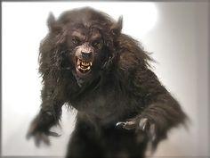 Werewolf suit by KNB Effects