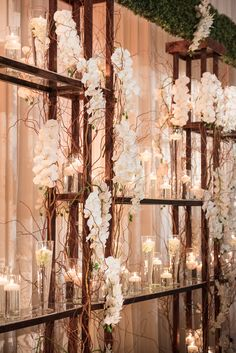 Bridal Stage backdrop with  phalaenopsis orchids and candlelight                                                                                                                                                                                 More