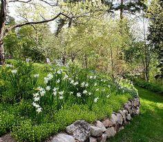 Igår gjorde jag ett litet reportage på bloggen om trädgårdsdesigner Marika Delin, som jag tycker är fantastiskt duktig! Hon använder mycket natursten och tegel, och skapar underbara planteringar som verkligen smälter in i miljön Yesterwww.marikadelintradgard.se #arkitektenstradgard #
