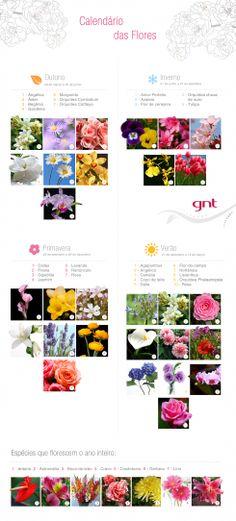 Flores da estação: saiba a época das espécies mais usadas em casamentos - GNT