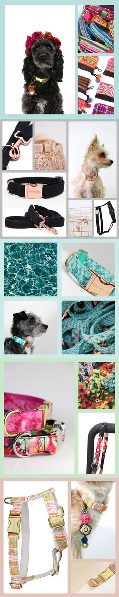 HANDMADE DOG SUPPLIES FROM GERMANY - shop online www.prunkhund.com - every item sold supports a dog in need with a meal - designer collars, leashes and harnesses