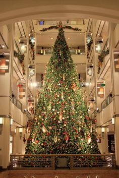 900 Building Christmas Tree / Chicago (c)  Nastasia Yakoub