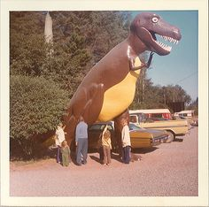 t-rex in the parking lot Dinosaur Park, Giant Dinosaur, Old Photos, Vintage Photos, Roadside Attractions, Weird And Wonderful, Vintage Colors, T Rex, Prehistoric