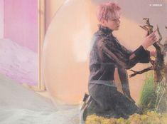 Jungkook - E Version Kookie Bts, Bts Jungkook, Taehyung, Busan, Bts Concept Photo, Jungkook Aesthetic, Bts Love Yourself, Boy Pictures, Korean Boy Bands