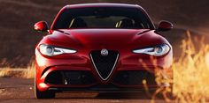Alfa Romeo to go down under Alfa Romeo Giulia to launch in Australia early 2017.  Fiat Chrysler Automobiles (FCA) in Australia have confirmed they want to take the battle to Audi, BMW and Mercedes-Benz,  not just with the flagship Giulia Quadrifolio performance version but also with the entry Giulia and mid-range Giulia models. #AlfaRomeo #giulia #enzari #italia #cars #performance #australia