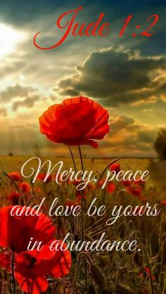 Jude (NIV) 2 Mercy, peace and love be yours in abundance. Prayer Scriptures, Bible Prayers, Prayer Quotes, Bible Verses Quotes, Faith Quotes, Healing Scriptures, Biblical Quotes, Heart Quotes, Religious Quotes