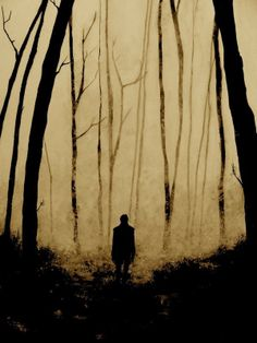 The Hunting Blind | The Mirror Obscura--a poem