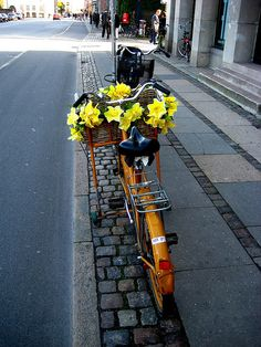 Bike with yellow flowers in the basket. Bicycle Pictures, Bike Photography, Motorcycle Gloves, New Motorcycles, Bicycle Art, Vintage Bicycles, Flower Basket, Mellow Yellow, Yellow Flowers