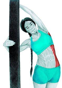 Muscle Stretches, Stretching Exercises, Senior Fitness, Yoga Fitness, Yoga Sequences, Yoga Poses, Yoga 1, Kundalini Yoga, Yoga Routine