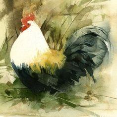 KO.71 wood cock - giclee print from original watercolour