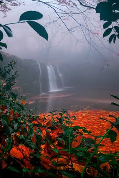 Suuçtu Falls, Bursa