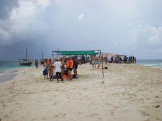 #Zanzibar
