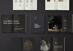 Brand identity and brand book by Marx Design for The True Honey Company, a New Zealand-based business specialising in mānuka…