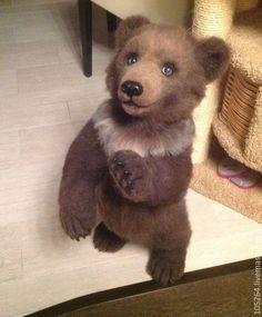 Life sized needle felted Bear Cub by Alice Kruglov.  She makes AMAZING life like animals.