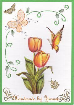 YB 142 tulpen