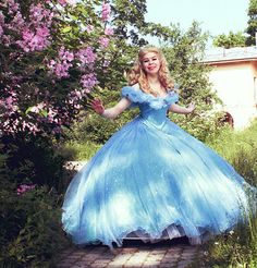 Cinderella Dress 2015 (Free shipping) adult Disney Princess Costume Cosplay  Movie Gown