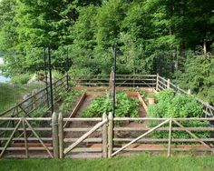 Outdoor & Garden: Great Garden Fence Ideas With Deer Fence And Wood Fence For Vegetable Garden With Planters Surrounded By Lawn And Trees For Traditional Landscape Design Bamboo Garden Fences, Small Garden Fence, Unique Garden, Fenced Vegetable Garden, Backyard Vegetable Gardens, Vegetable Garden Design, Garden Privacy, Vegetables Garden, Potager Garden