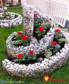 Nedávajte muškáty len do okien či na balkón: Pestovatelia ukázali úchvatné nápady, ako pestovať obyčajné muškáty - toto stokrát zvýrazní ich krásu!